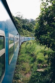 Train bleu traversant une plantation de thé au sri lanka