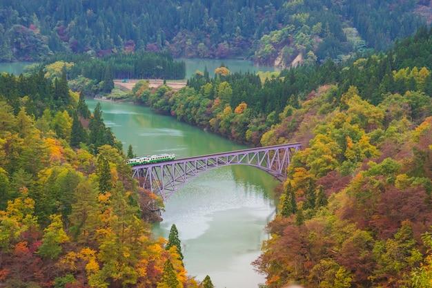 Train traversant le premier pont à la ligne tadami avec beau feuillage d'automne à mishima, district d'onuma, fukushima, japon.