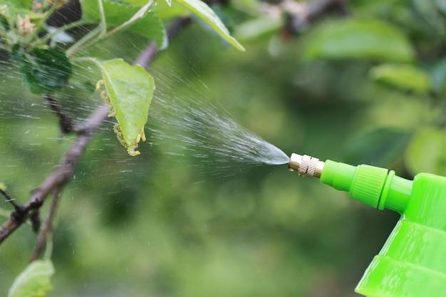 Traitement des plantes contre les insectes nuisibles à la ferme