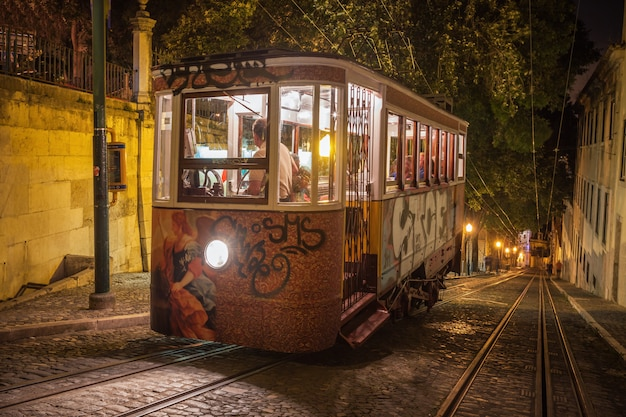 Tram spécial, miradouro saopedro