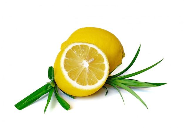 Tranche de fruits citron frais avec feuille verte sur blanc