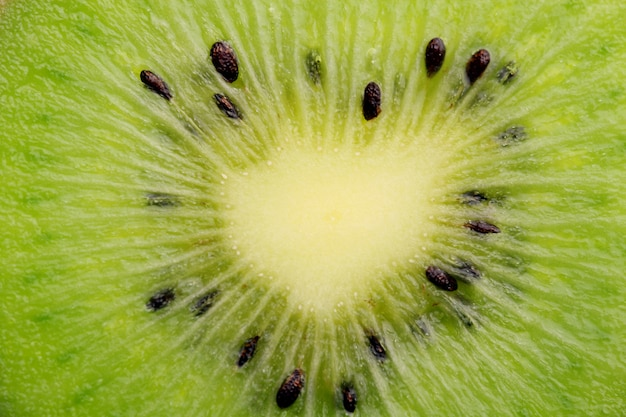 Tranche de kiwi bouchent