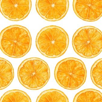 Tranches d'orange aquarelle. modèle.
