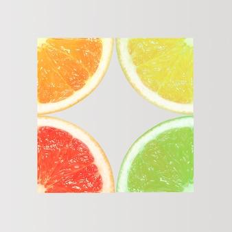 Tranches d'orange, de citron, de pamplemousse et de citron vert sur fond clair. concept d'été minimal. mise à plat.