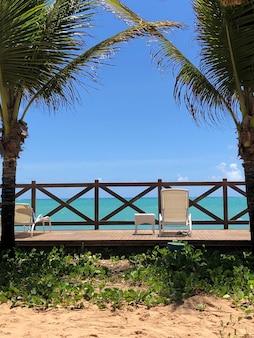 Transat face à la mer avec cocotiers à côté de ciel bleu