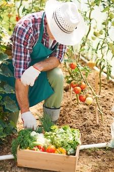 Le travail acharné dans le jardin donne des résultats