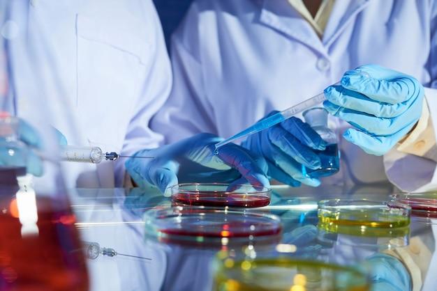 Travail en commun de scientifiques talentueux