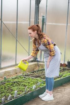 Travail, passe-temps. femme aux cheveux longs attentionnée en tablier avec arrosoir vert clair arrosant de verdure dans sa serre