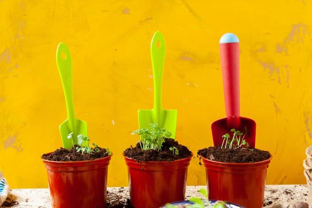 Travailler dans le jardin, planter des pots en gros plan