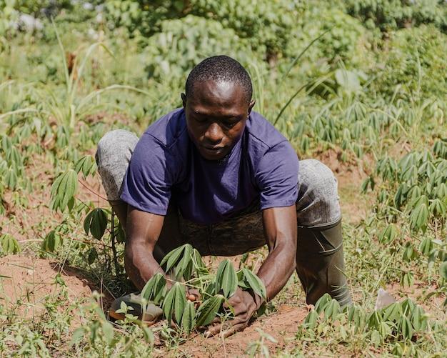 Travailleur de la campagne plantant dans le champ