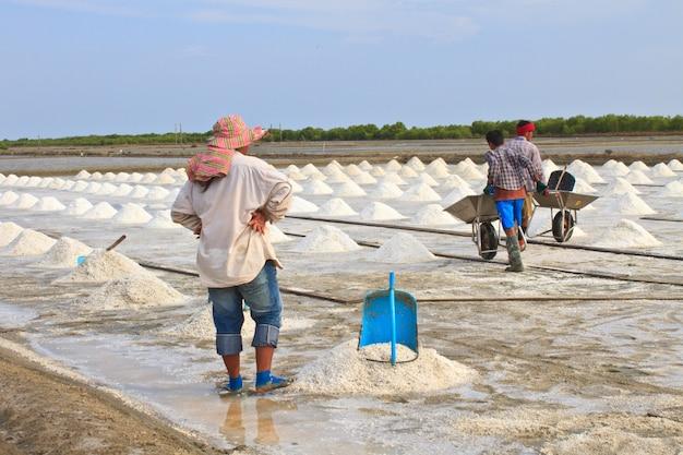 Travailleur salé en thaïlande