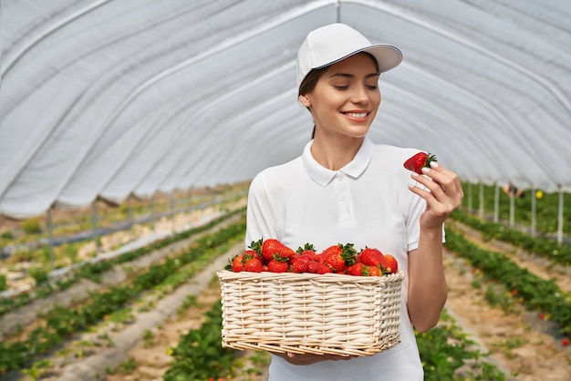 Travailleur de terrain féminin heureux debout à effet de serre avec panier en osier plein de fraises mûres fraîches