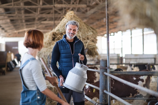 Travailleurs hommes et femmes travaillant dans une ferme laitière, industrie agricole.