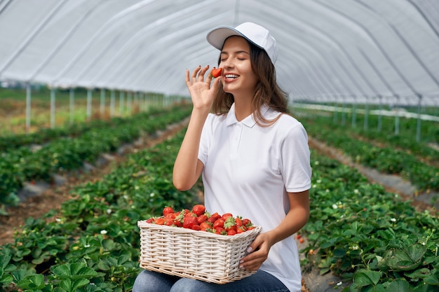 Une travailleuse sur le terrain sent juste la fraise cueillie