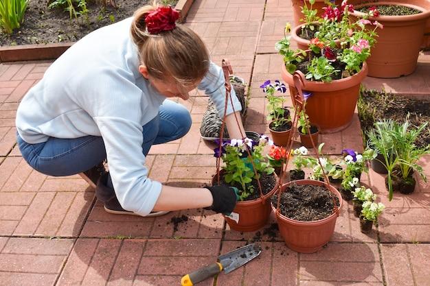 Travaillez dans le jardin. culture de plantes. planter des plants de fleurs. femme prend soin des plantes de jardin