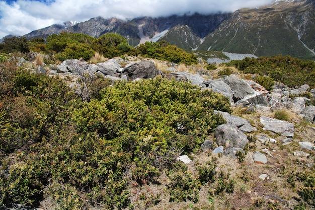 Trekking dans la vallée de hooker, nouvelle-zélande