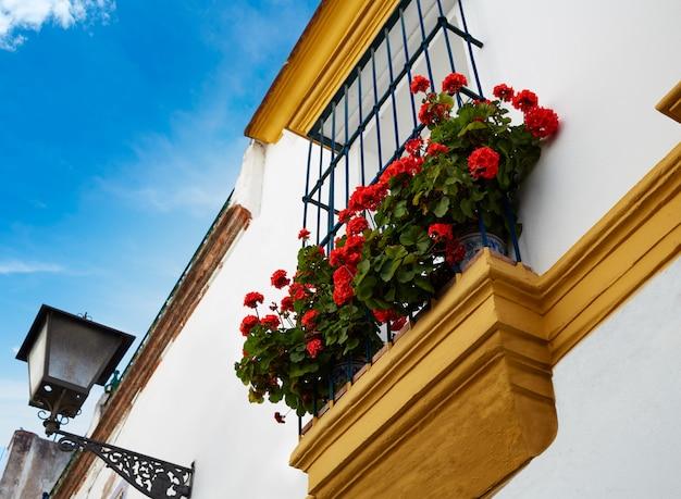 Triana barrio seville façades andalousie espagne