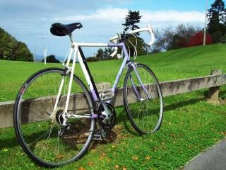 Trilite lightweight_ raleigh, le sable