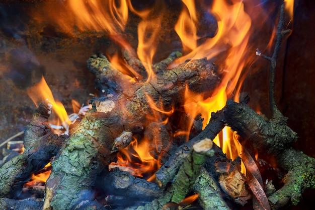 Trois bûches en feu dans un fourneau chaud