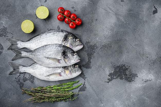 Trois dorades entières ou dorade dorade poisson aux herbes poivre citron vert tomate pour la cuisson et grill sur fond texturé gris, vue de dessus avec un espace pour le texte.