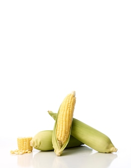 Trois épis de maïs avec des coques