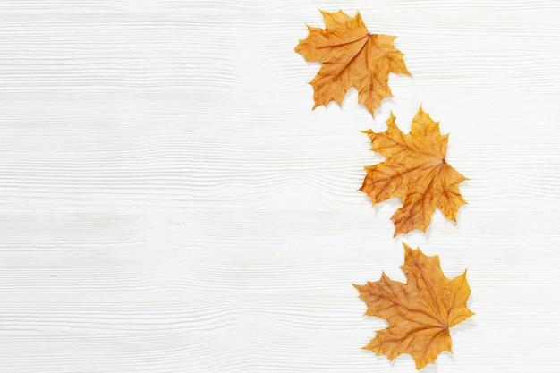 Trois feuilles d'érable jaune sur un fond en bois blanc avec espace de copie.