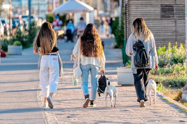 Trois jeunes femmes latines inconnues marchant dans la rue avec deux chiens vue arrière à la serena au chili