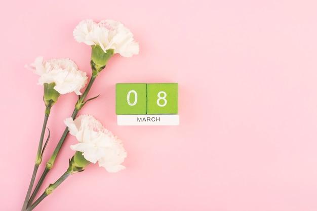 Trois œillets sur fond rose