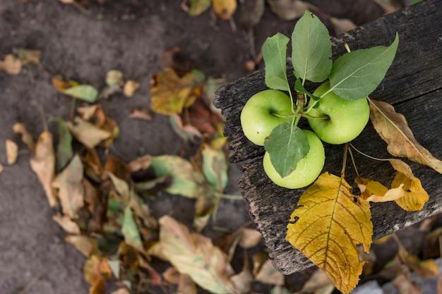 Trois pommes dans des gouttes d'eau avec des feuilles d'automne sur un bois