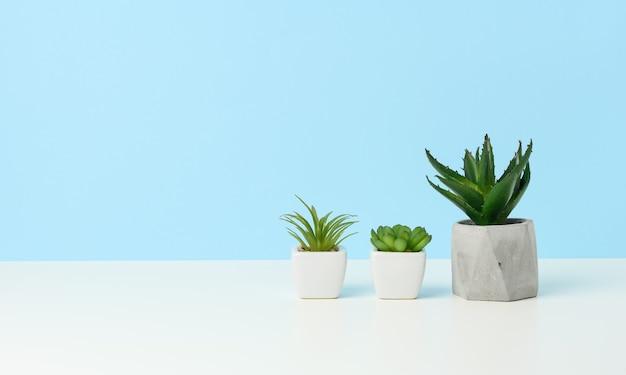 Trois pots en céramique avec des plantes sur une table blanche, fond bleu, espace pour copie