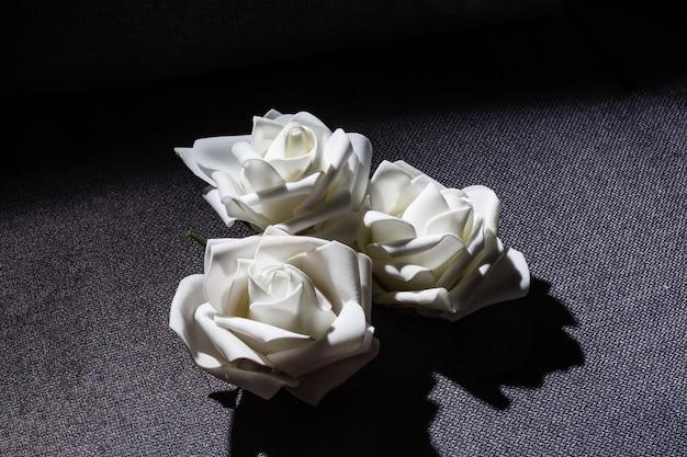 Trois roses blanches sur fond gris