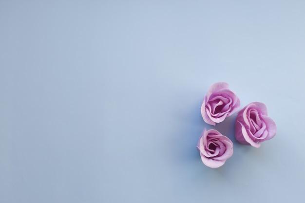 Trois roses pourpres sur fond bleu clair avec espace de copie