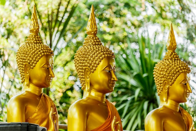 Trois statues d'or big buddha au temple thaïlande