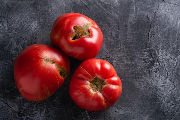 Trois tomates anciennes