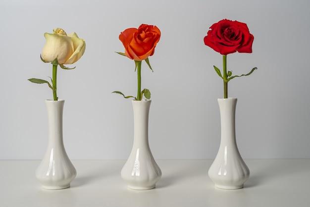 Trois vases blancs identiques avec des roses rouges, oranges et blanches