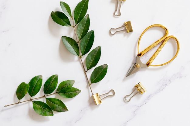 Trombones avec des plantes en pose à plat
