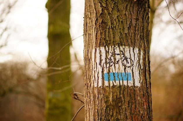 Tronc d'arbre avec un signe peint d'un vélo dessus