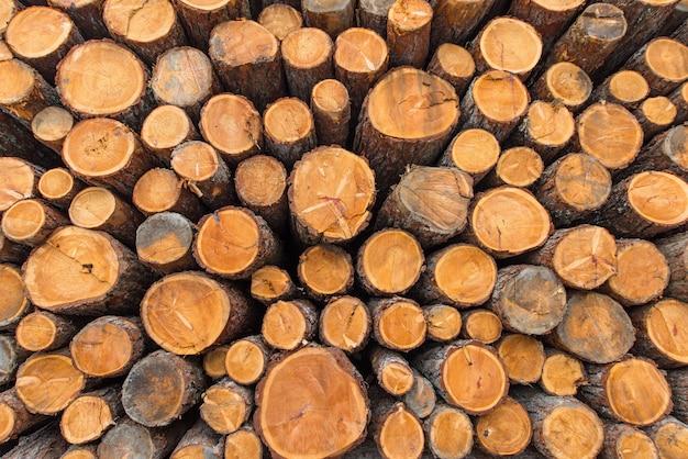 Troncs de bois empilés sur les alpes suisses