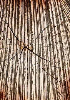 Troncs de bouleau sciés et couverts de fissures, en surface il y a de nombreuses coupures et irrégularités comme après la sculpture sur bois