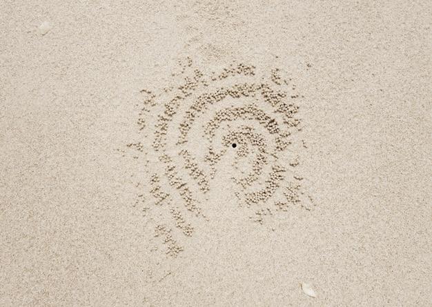Trou de crabe dans le sable