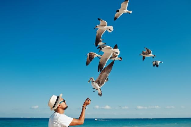 Troupeau d'alimentation mâle touristique de mouettes sur la plage contre le ciel bleu clair