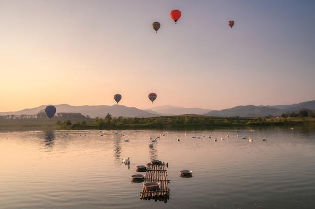 Troupeau de cygnes dans l'étang avec des montgolfières volant sur une colline