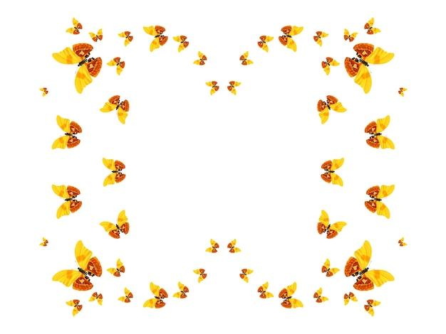 Troupeau de papillons volants isolés sur fond blanc. silhouette d'un papillon. papillons tropicaux. insectes tropicaux. photo de haute qualité