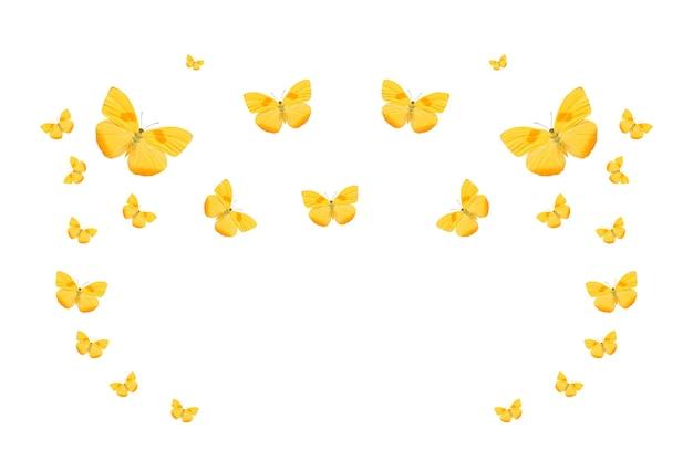 Troupeau tropical de papillons colorés volants isolés sur blanc. papillons jaunes. papillons tropicaux. insectes volants. photo de haute qualité