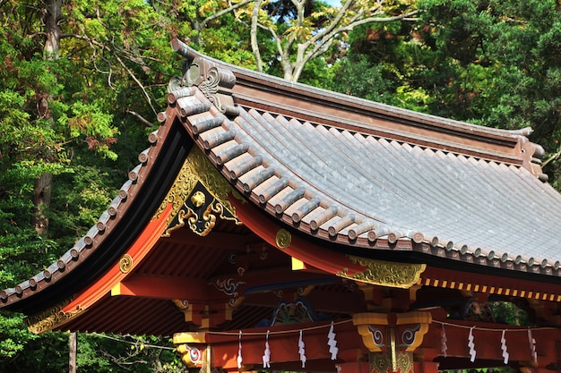 Tsurugaoka hachimangu shrine, kamakura, japon