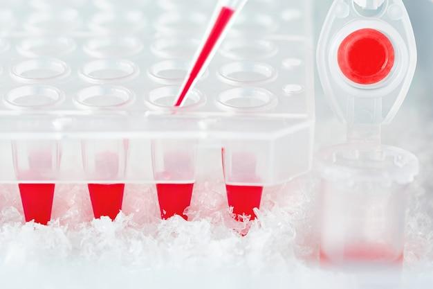 Tube en plastique, pointe de pipette remplie de mélange réactionnel rouge et puits en plastique jetables