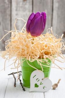 Tulipe pourpre dans le seau vert et coeur décoratif