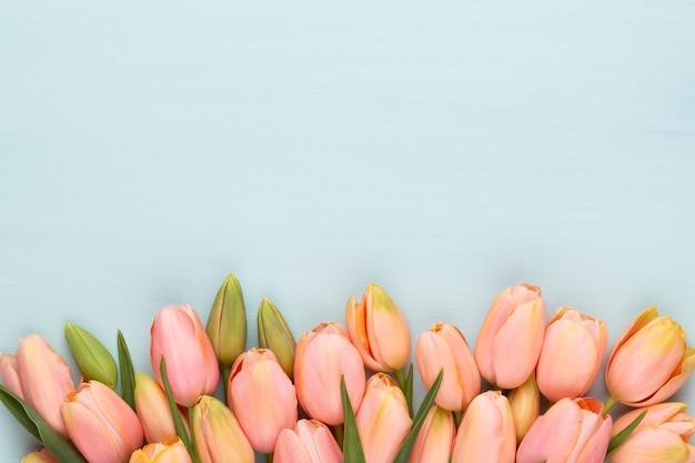 Tulipe rose sur le fond en bois vintage.