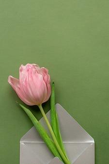Tulipe rose tendre et élégante enveloppe grise en fond de fond vert pastel. mise à plat. copiez l'espace. place pour le texte. concept de la journée internationale de la femme, fête des mères, pâques. saint valentin