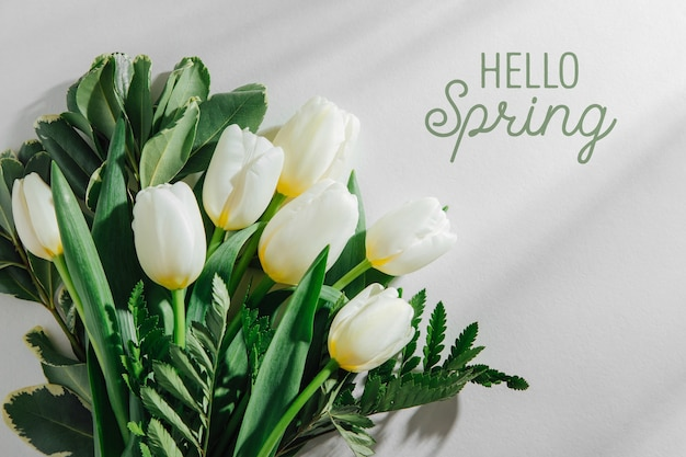 Tulipes blanches sur fond blanc avec la lumière du soleil du matin. compositions de style de vie élégant.